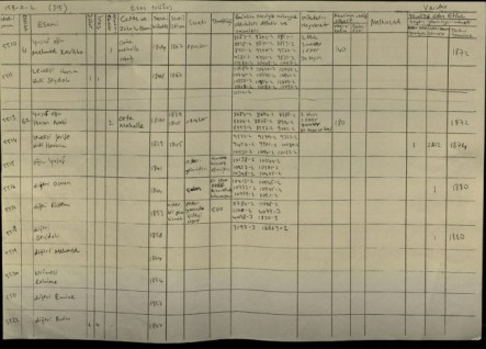 This 1878 census shows that Hasan son of Yusuf born in 1800 was an Arab. The numerous numbers titled under Emlak (property) are the numerous plots of land, 38 in total were registered in his name. This is a clear indication that this was a well off land owner. To the left of the property, titled under ''Mikdari-hayvanat''(number of animals) are registered 86 head of diverse animals in his name.
