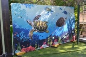 Meritta Turtle Rehabilitation Centre 1A