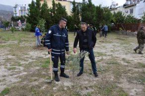 Belediye çalışanları fidan dikti (2)