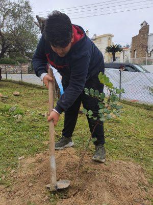 Girne Childrens Assembly sapling planting (8)