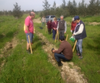 ATA Planting a forest (5)