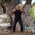 Qigong Home Training image