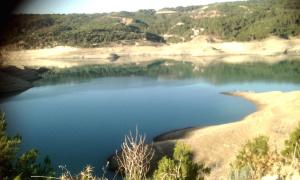 Dam4 June