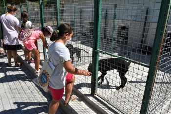 Girne Municipality Children's Council Visited the Animal Shelter (1)