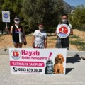 Girne Municipality Children's Council Visited the Animal Shelter (4)