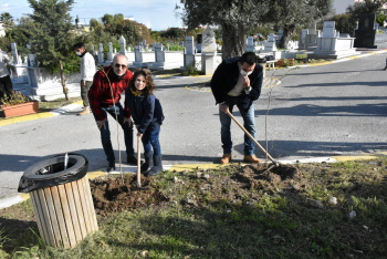 Girne Municipality Continues Tree Planting Works (3)