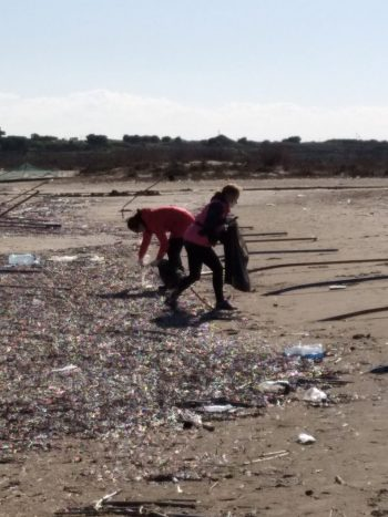 Glapside Beach cleaning (6)
