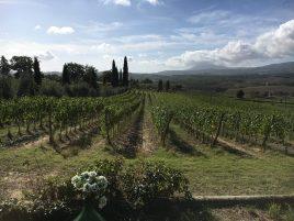 La Cignozza Winery, (2)