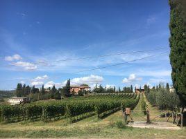 La Cignozza Winery, 930