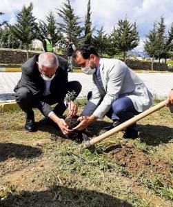 Girne Municipality and Alevi Culture Center sapling planting event (1)