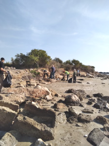 TRNC Environmental Protection Department initiated beach cleaning (1)