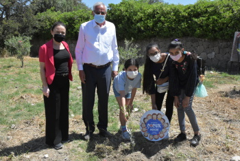 Girne Sapling planting event 2 (1)