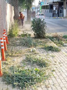 Girne road cleaning (20)