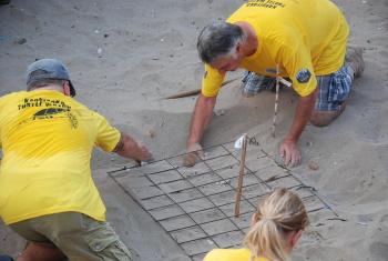 Karşıyaka Güzelyalı Beach Turtle project (9)