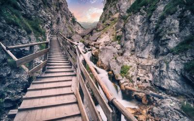 Trajectoire de carrière. Préférez vous être propulsé par une catapulte ou monter un escalier ?