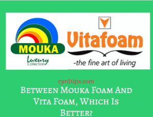 Mouka Foam And Vita Foam Which Is Better (Reviews And Comparisons In 2020)