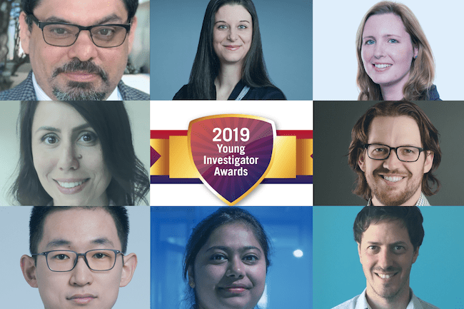 Learn more about the 2019 ICIS Young Investigator Award Winners