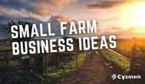 Small Farm Business Ideas