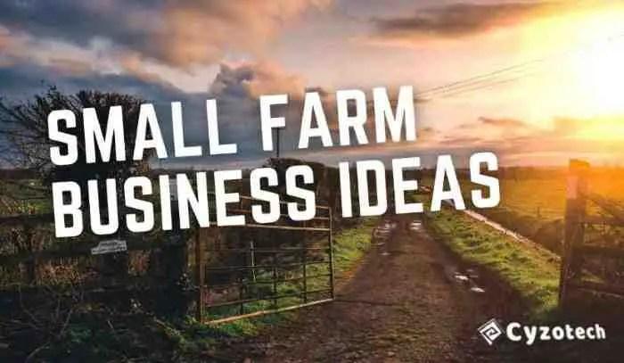 Small Farm Business Ideas