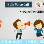 voice calls services
