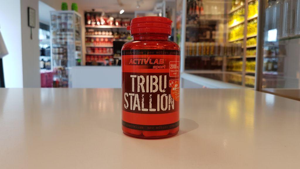 Tribu Stallion - Activlab Muscle Power Częstochowa - sklep z suplementami i zdrową żywnością