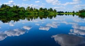 rzeka Nogat