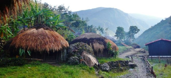 We-walked-for-6-days-in-Baliem-Valley-Papua-Indonesia__880