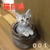 【猫自慢】みんながTwitterにあげた可愛い猫まとめてみた001(2015/08/01〜2015/08/15)