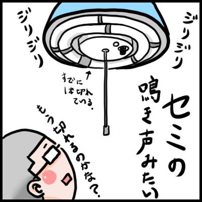 No0288_web