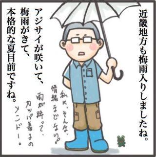 近畿地方も梅雨入りですね。