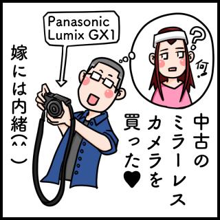ミラーレス一眼カメラ(Panasonic Lumix GX1)を買った。