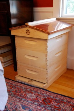 First hive completed: 3 medium supers and an English Copper Top