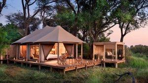Top 11 things to do in Botswana