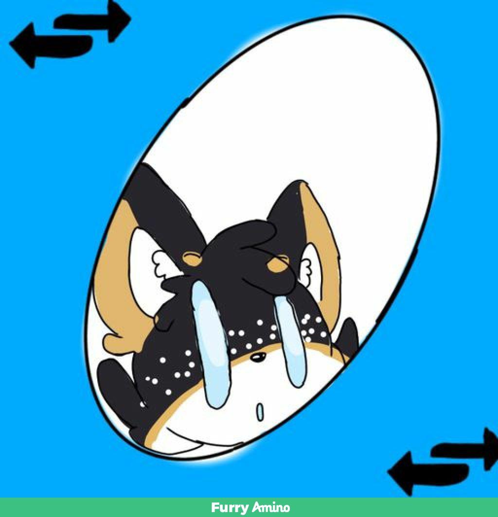Uno Reverse Card By Vixen Meme Fox Fur Affinity Dot Net