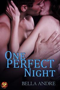 One Perfect Night