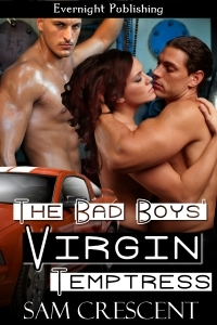 The Bad Boys' Virgin Temptress (The Law Castle Bad Boys, #1)