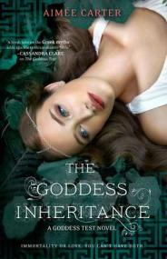 The Goddess Inheritance (Goddess Test, #3)