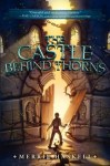 The Castle Behind the Thorns