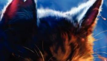 Fire and Ice (Warriors #2) – Erin Hunter