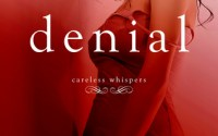 REVIEW, EXCERPT & GIVEAWAY:  Denial by Lisa Renee Jones