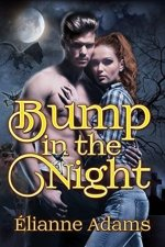 Bump In The Night by Elianne Adams