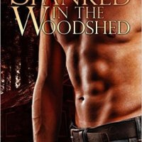 Review: Spanked in the Woodshed (Bend Over #3) by Brina Brady #BDSM #MM @BrinaBrady