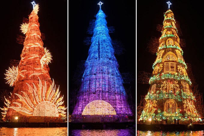 hot shots photos of the day stegosaurus typhoon hagupit world s - Biggest Christmas Tree In The World