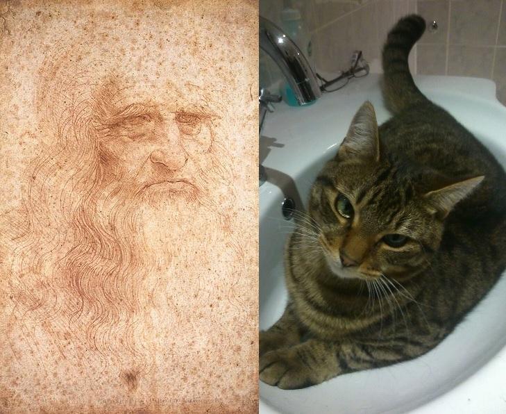 Modern Drawing Cats
