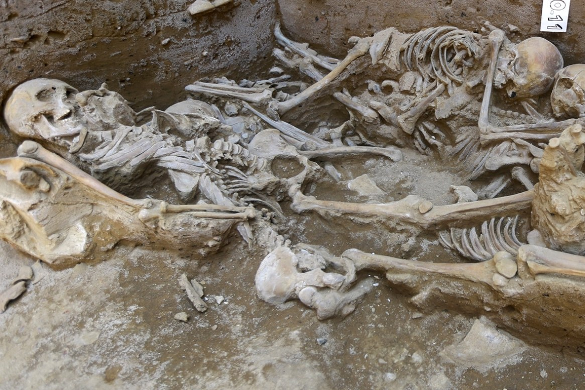 Sican human sacrifice skeletons grave Peru