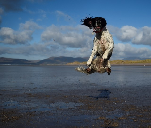 Pictures Of The Week The Best News Sport Weather And Animal Photos From  February