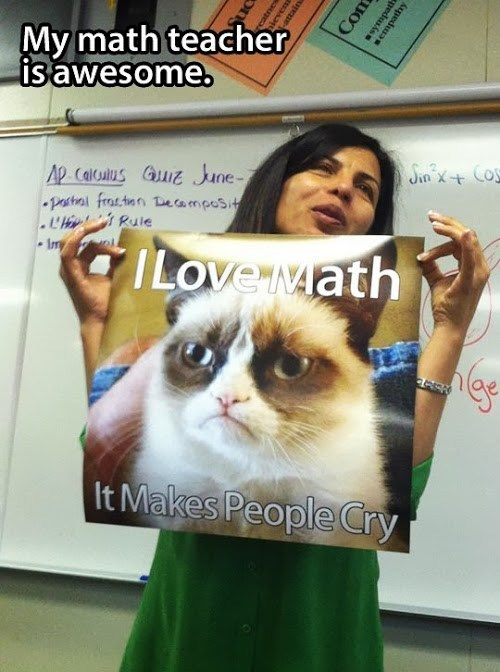 You Dont Becasue You Love I Mean Loaf Taylor Starts To Cry Ridiculously Photogenic Cat Make A Meme