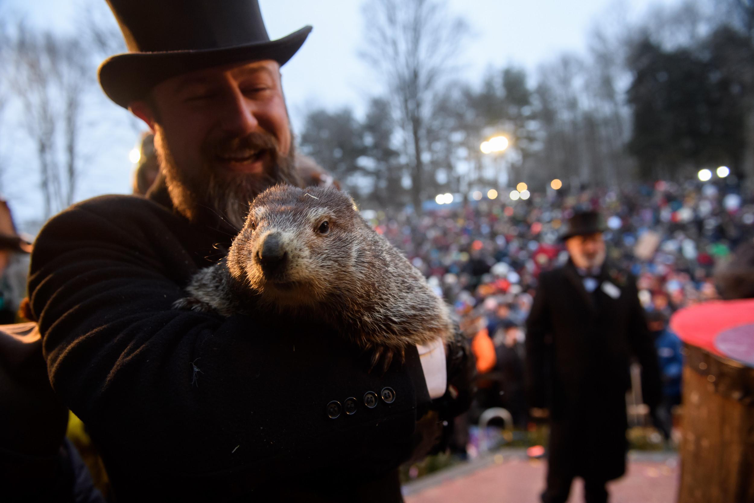 Groundhog Day Livestream Watch Punxsutawney Phil