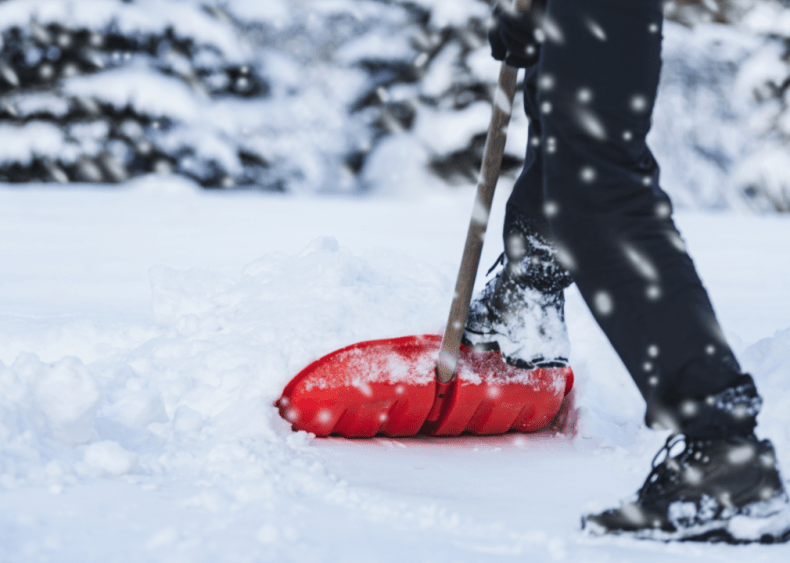 What winter was like the year you were born