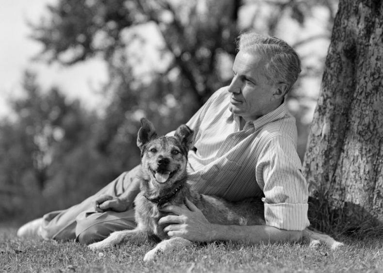 1960s: Dogs double as therapists